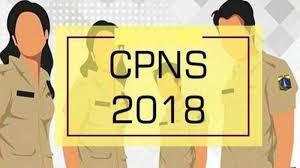 Penerimaan CPNS Lulusan Biologi di Kabupaten Bangka Selatan